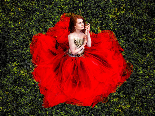 Poppy inspired red carpet gown